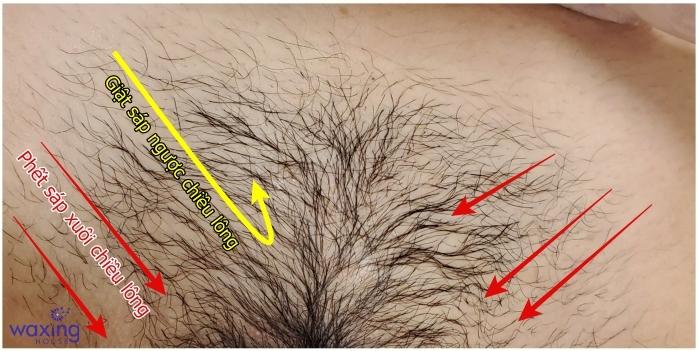 Cách phết sáp khi wax lông vùng kín